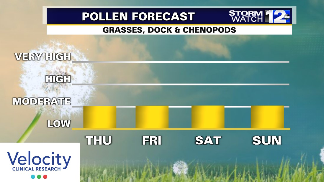 Pollen%20Count